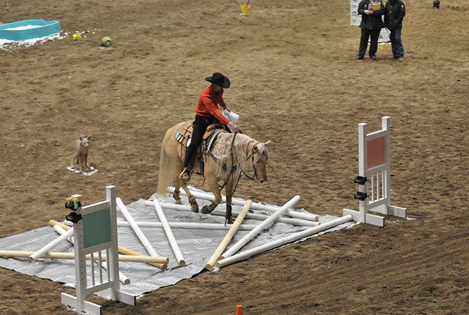 Horse and rider in log jam competition at Equine Affaire.