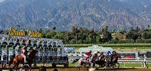 Panoramic view of horse racing at Santa Anita Race Track.