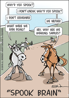 Books! Key to really understanding your horse.