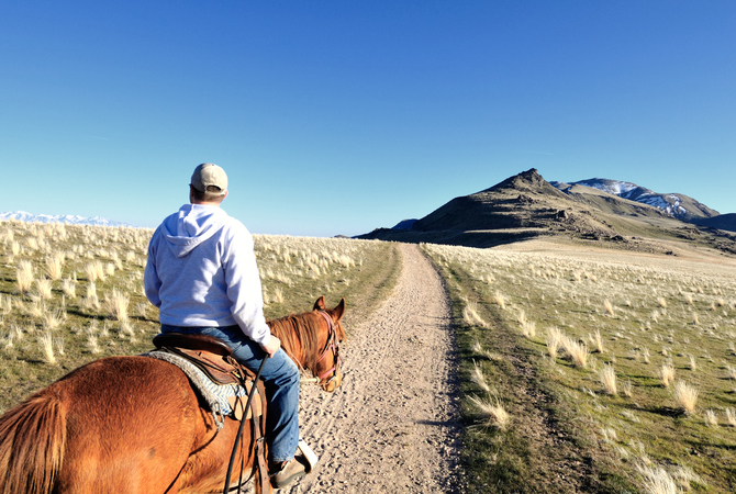 Conditioning a horse on a trail ride on Antelope Island, Utah.