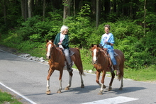 Horseback riders enjoying a ride in the country.