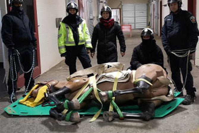 Hamilton Mounted Police Large Animal Rescue Team