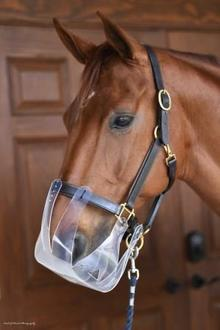 Horse wearing a Flexible Filly Slow Feed Grazing Muzzle.