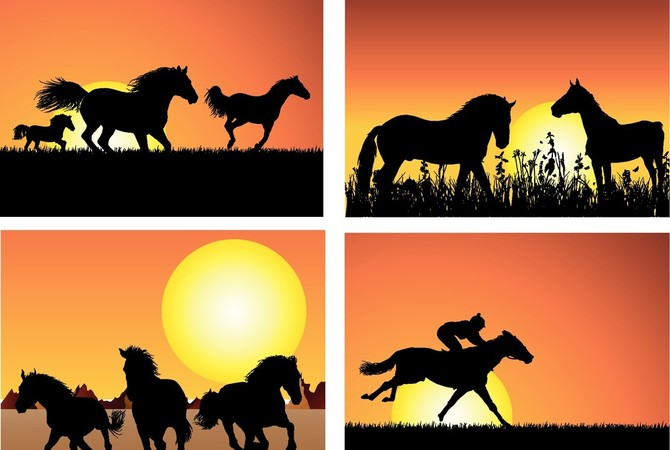 Sunrise - Sunset - Horses and humans at play!
