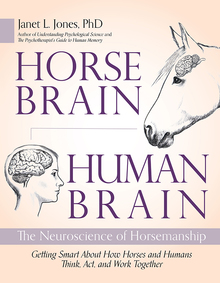 Horse Brain, Human Brain book cover.