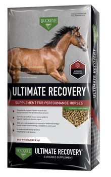 A bag of Buckeye's Ultimate Recovery horse supplementA bag of Buckeye's Ultimate Recovery horse supplement.