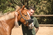 Simon Marrier d'Unienville – Monty Roberts Certified Instructor.