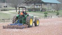 Worker on tractor maintaining outdoor ArenaGreen footing.