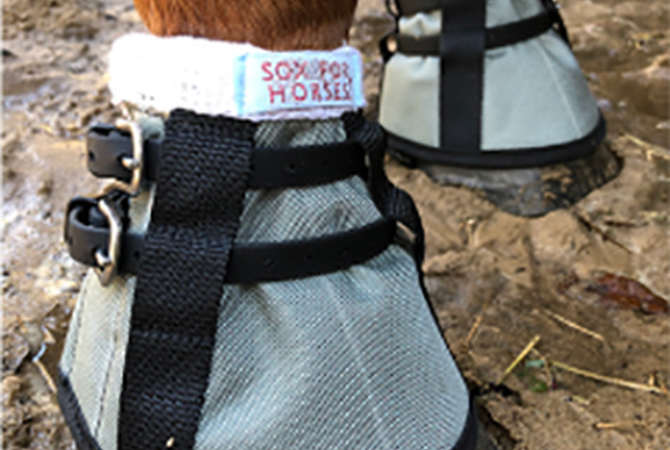 Silver Bells pastern wraps on horse standing in mud