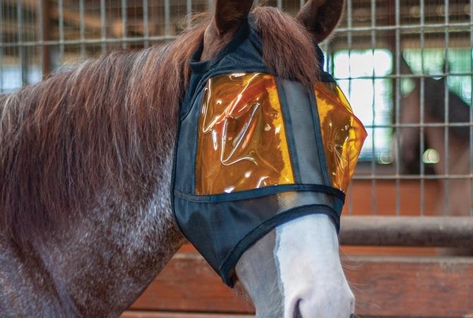 Horse wearing REM Restorative Equine Mask.