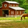 Horse barn for horses, feed, and supplies