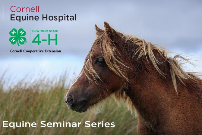 Cornell and 4-H Announcement of Horse Health Seminars.