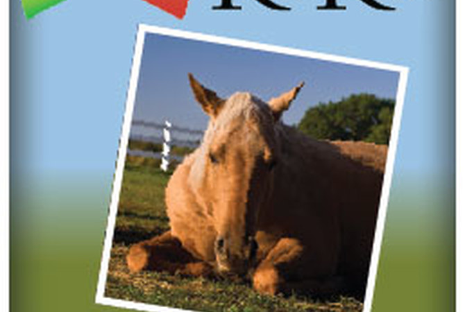 Colic Risk Rater-Gauge with image of horse suffering from colic