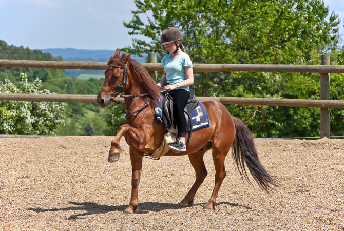 High-stepping pony with young rider wearing an equestrian helmet.
