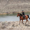 Woman riding horse along river trail.