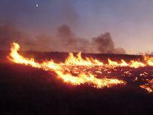 Wild fire burning across acres of open land.