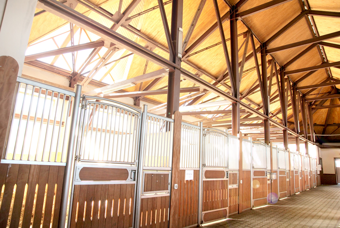 Well-ventilated horse barn interior/