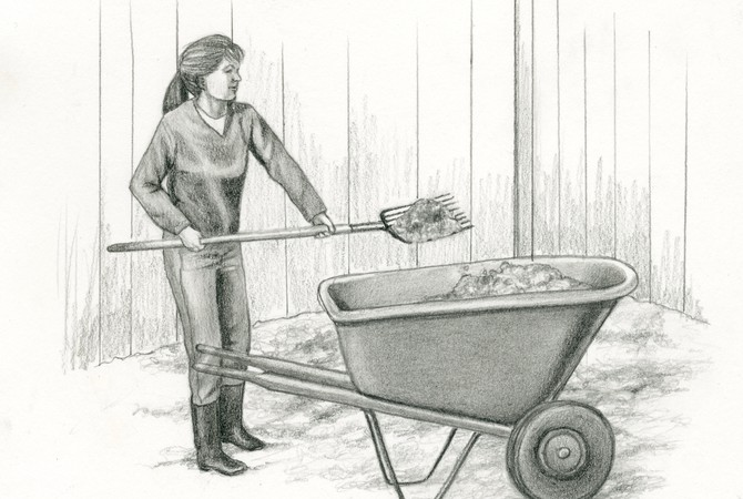 Woman mucking stall.