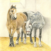 Drawing of younger and older horses.