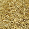 Straw - Safe as free-choice feed for insulin resistant horse?