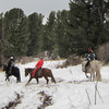 Horses and riders enjoying a winter trail ride.