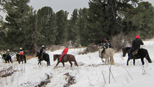 A snowy horse trail ride.