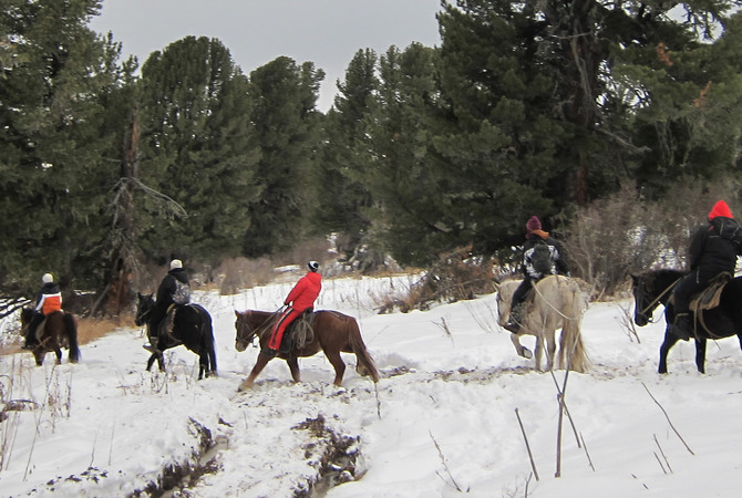A winter trail ride enjoyed by both horses and riders.