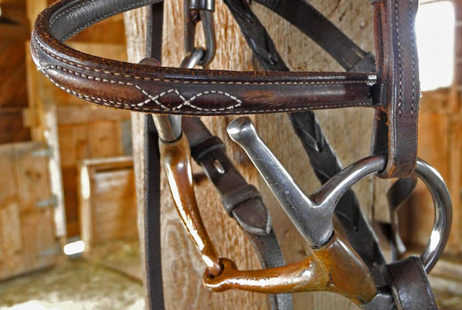 A bridle with bit hanging on a barn post.