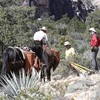 Men working to keep horse trail open.