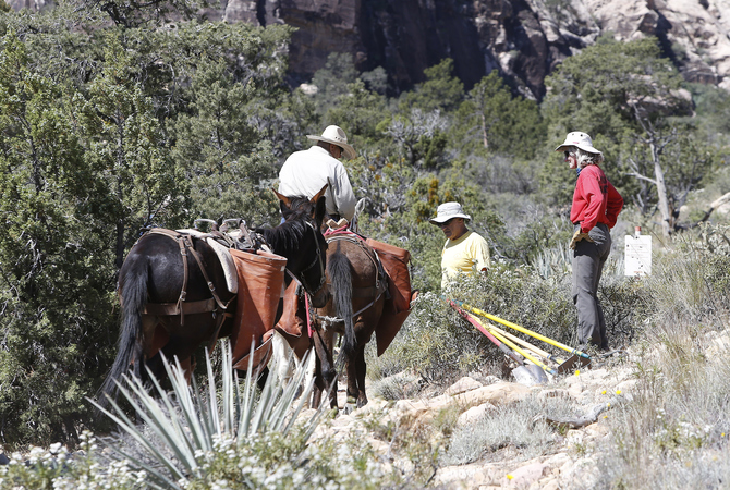 Workers spiffing up horse trail.