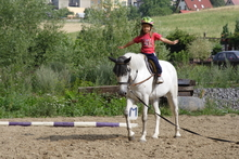 Young girl on a horse and ready for competition.
