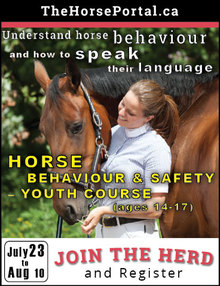 All you need to know about Equine Guelph summer program.