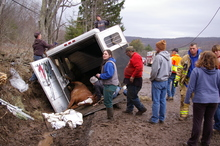 Responders rescuing horse from wrecked trailer.