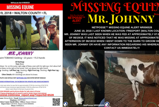 Info about Mr. Johnny.