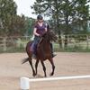 Rider on Thoroughbred horse.