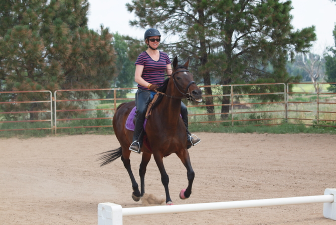 Rider on Thoroughbred horse.