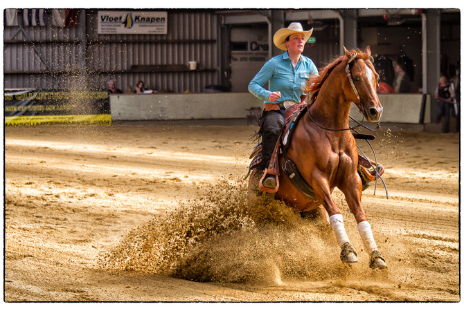 Equine athlete showing his stuff in reining contest.