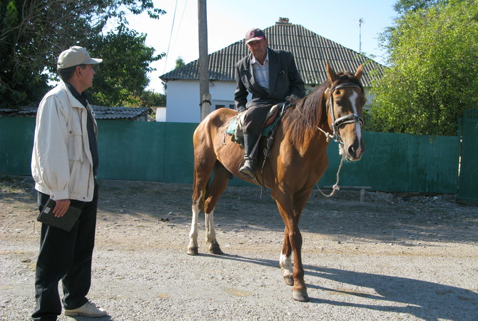 Owner and farrier observing a horse with a lame fromt leg.
