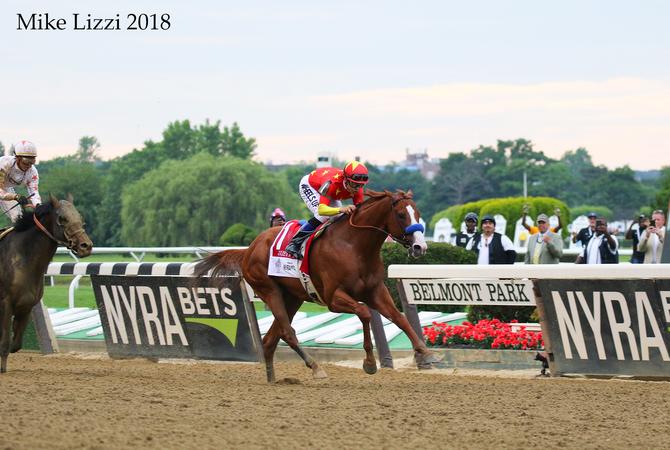 Justify racing at Belmont