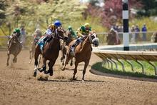 Horses racing around track.
