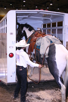 Practice makes perfect when trailer loading your horse