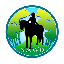 Western dressage for every equestrian