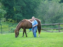 Gayle Ecker and her horse Jewel