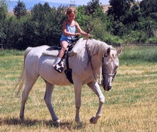 Dani guiding horse gently with reins
