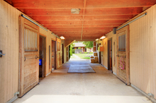 Organized and clutter free horse barn aisle
