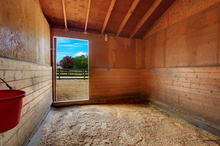The horse stall