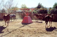 Horses exercising on a Centaur Hot Walker