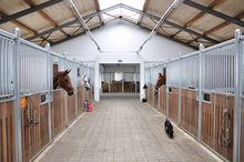 Horse barn with natural lighting and high ceilings