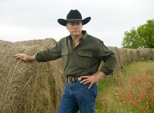 Botulism contamination possible in hay