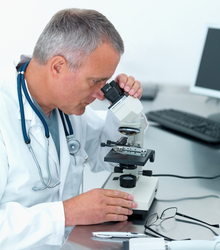 Technician checking sperm motility